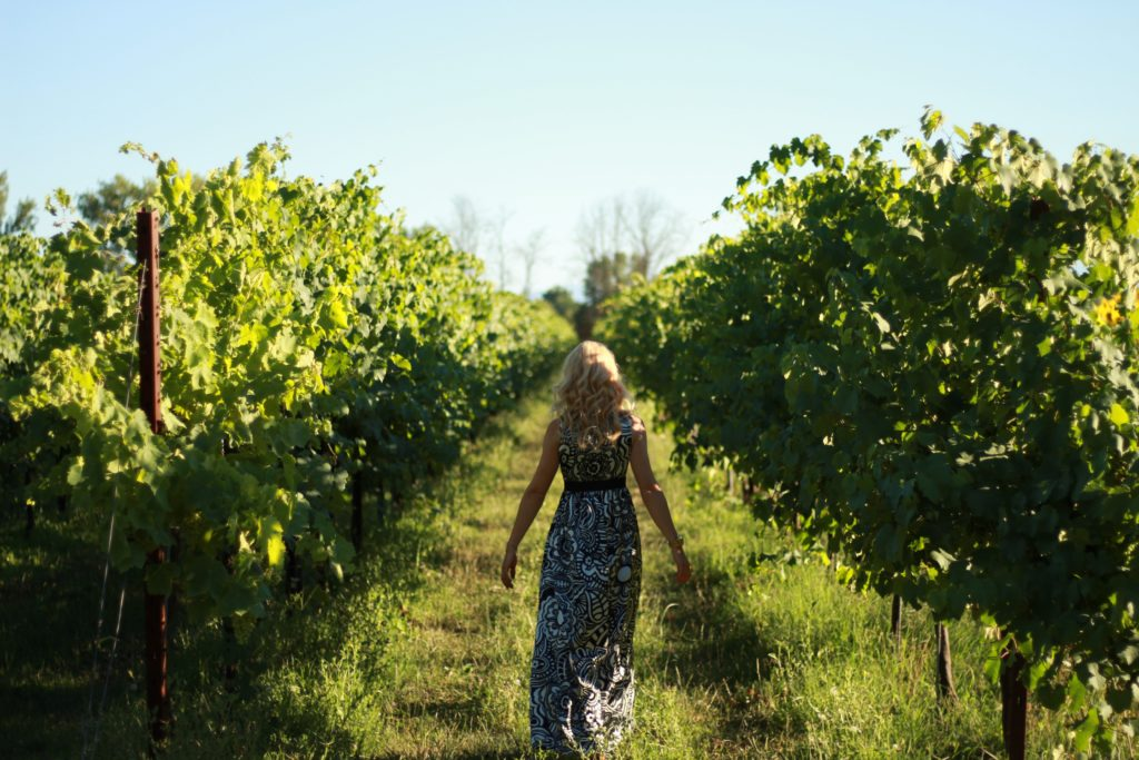 In vino veritas-Exploring some wine and vineyards in